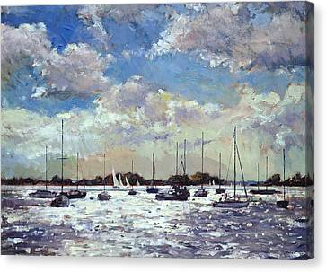 Evening Light - Gulf Of Morbihan Canvas Print by Christopher Glanville