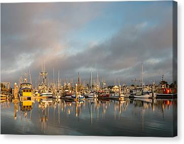 Evening Reflections On Woodley Island Marina Canvas Print by Greg Nyquist
