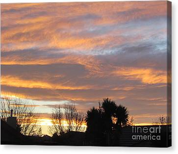 Evening Sky Canvas Print by Joyce Woodhouse