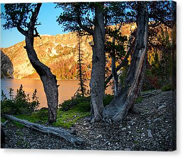 Everson Lake 2 Canvas Print by Leland D Howard