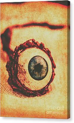 Evil Eye Canvas Print by Jorgo Photography - Wall Art Gallery