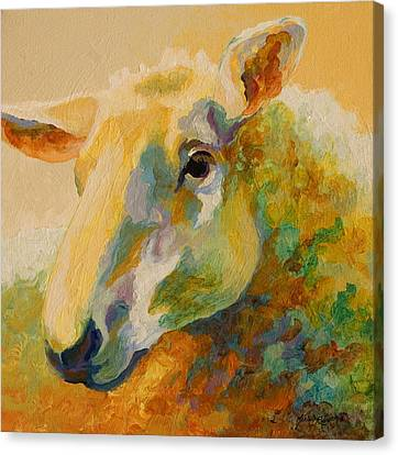 Ewe Portrait IIi Canvas Print by Marion Rose