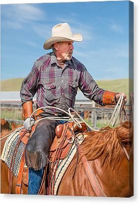 Experienced Cowboy Canvas Print by Todd Klassy