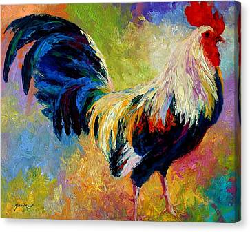 Eye Candy - Rooster Canvas Print by Marion Rose