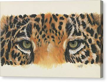 Eye-catching Jaguar Canvas Print by Barbara Keith
