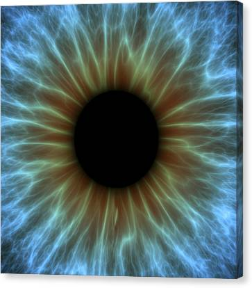 Eye, Iris Canvas Print by Pasieka