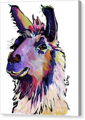 Fabio Canvas Print by Pat Saunders-White