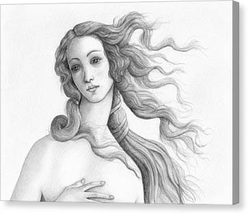Face Of A Goddess Canvas Print by Stevie the floating artist