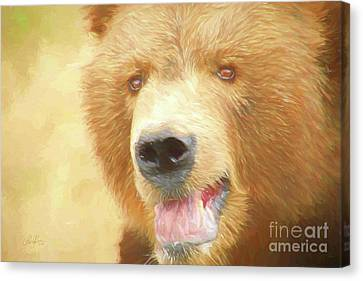 Face To Face Canvas Print by Cheryl Rose