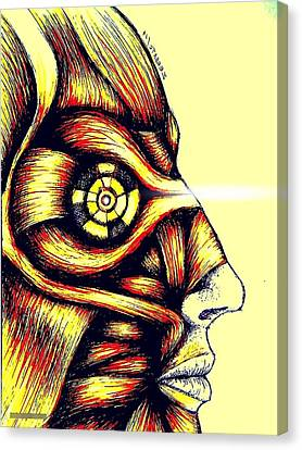 Facial Muscles Canvas Print by Paulo Zerbato