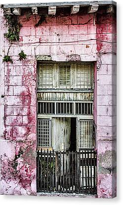 Faded Rouge Canvas Print by Dawn Currie
