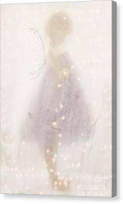 Fairy Lights Canvas Print by Stephanie Frey
