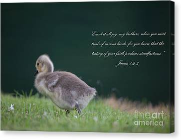 James 1 Canvas Print by Dale Powell