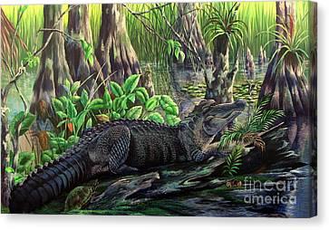 Florida Alligator- Beast Amongst The Beauty Canvas Print by Daniel Butler