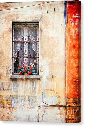 Fake Flowers On Window Canvas Print by Silvia Ganora