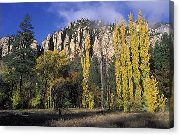 Fall Colors And Red Rocks Near Cave Canvas Print by Rich Reid