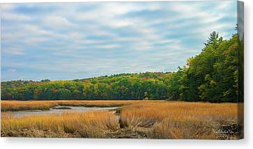 Fall Colors In Edgecomb Canvas Print by Tim Kathka