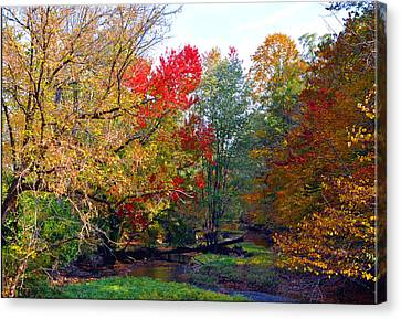 Fall Creek Canvas Print by Brittany H