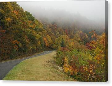 Fall Fog On The Blue Ridge Parkway Canvas Print by Cindy Hicks