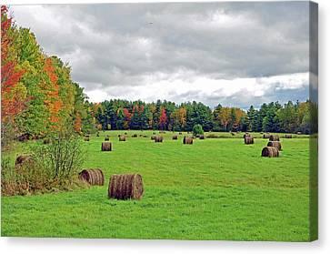 Fall Hay Bales Canvas Print by Glenn Gordon