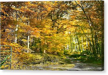 Fall In Bruceton Mills Forest Canvas Print by Michael Forte