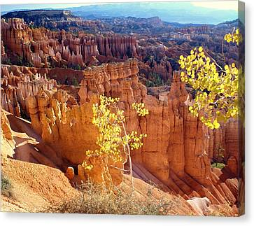 Fall In Bryce Canyon Canvas Print by Marty Koch