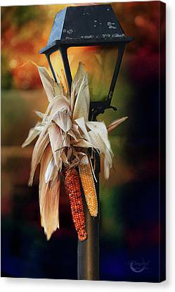 Fall Is Coming Canvas Print by Theresa Campbell