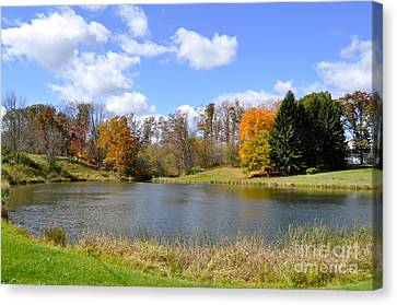 Fall Pond Canvas Print by Penny Neimiller