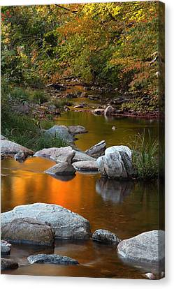 Fall Reflection Canvas Print by Andrea Galiffi