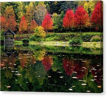 Fall Reflection Canvas Print by Rebekah Shennan