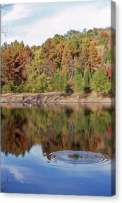 Fall Reflections - 1 Canvas Print by Randy Muir