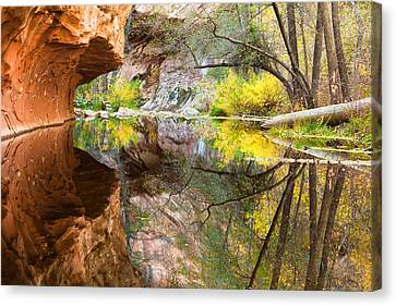 Fall Reflections Canvas Print by Carl Amoth