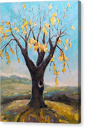Fall Tree In Virginia Canvas Print by Becky Kim