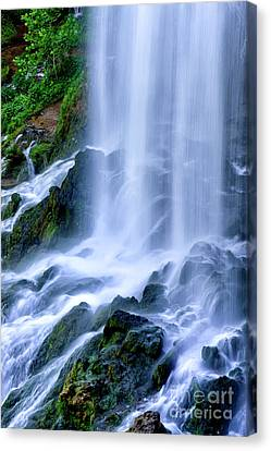 Falling Spring Falls Canvas Print by Thomas R Fletcher