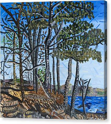 Falls Lake At Blue Jay Point Canvas Print by Micah Mullen