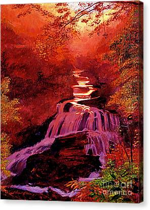 Falls Of Fire Canvas Print by David Lloyd Glover