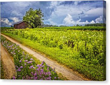Family Farm Canvas Print by Debra and Dave Vanderlaan