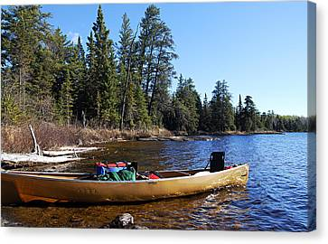 Farewell To Hope Lake Canvas Print by Larry Ricker