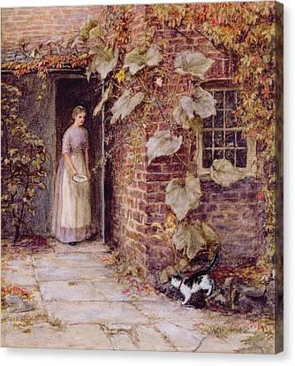 Feeding The Kitten Canvas Print by Helen Allingham
