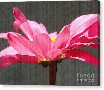 Feeling Free Canvas Print by Sue Melvin