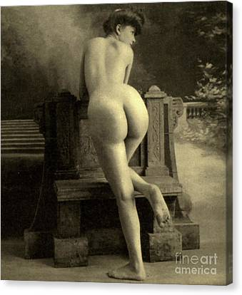 Female Nude, Circa 1900 Canvas Print by French School