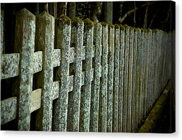 Fenced In Canvas Print by Sebastian Musial