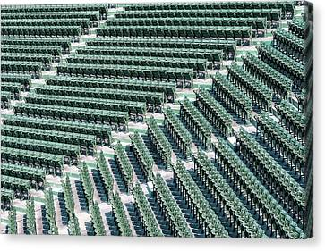 Fenway Park Green Bleachers Canvas Print by Susan Candelario