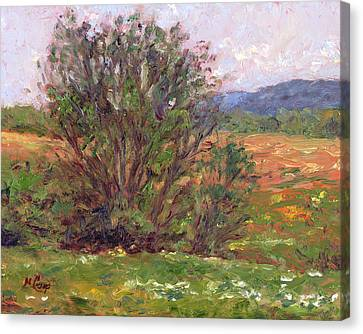 Field In Spring Canvas Print by Michael Camp