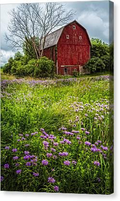 Field Of Flowers Canvas Print by Debra and Dave Vanderlaan