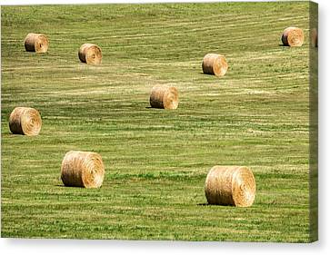 Field Of Large Round Bales Of Hay Canvas Print by Todd Klassy