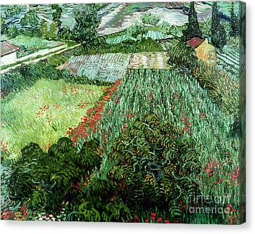 Field With Poppies Canvas Print by Vincent Van Gogh