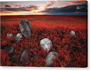 Down East Canvas Print featuring the photograph Fields Of Autumn by Patrick Downey