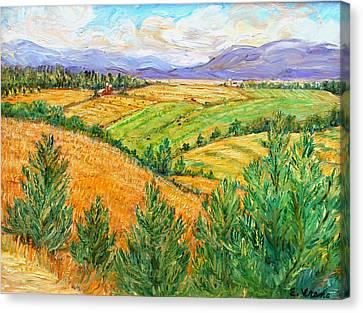 Fields Of Summer Canvas Print by Ethel Vrana
