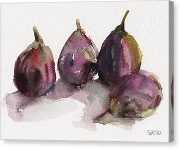 Fig Season Canvas Print by Beverly Brown Prints